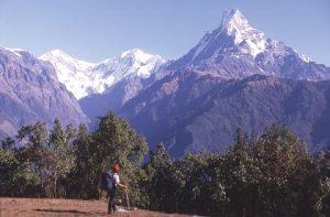 Machhapuchhare, Annapurna region, Nepal. Courtesy of www.geckosadventures.com